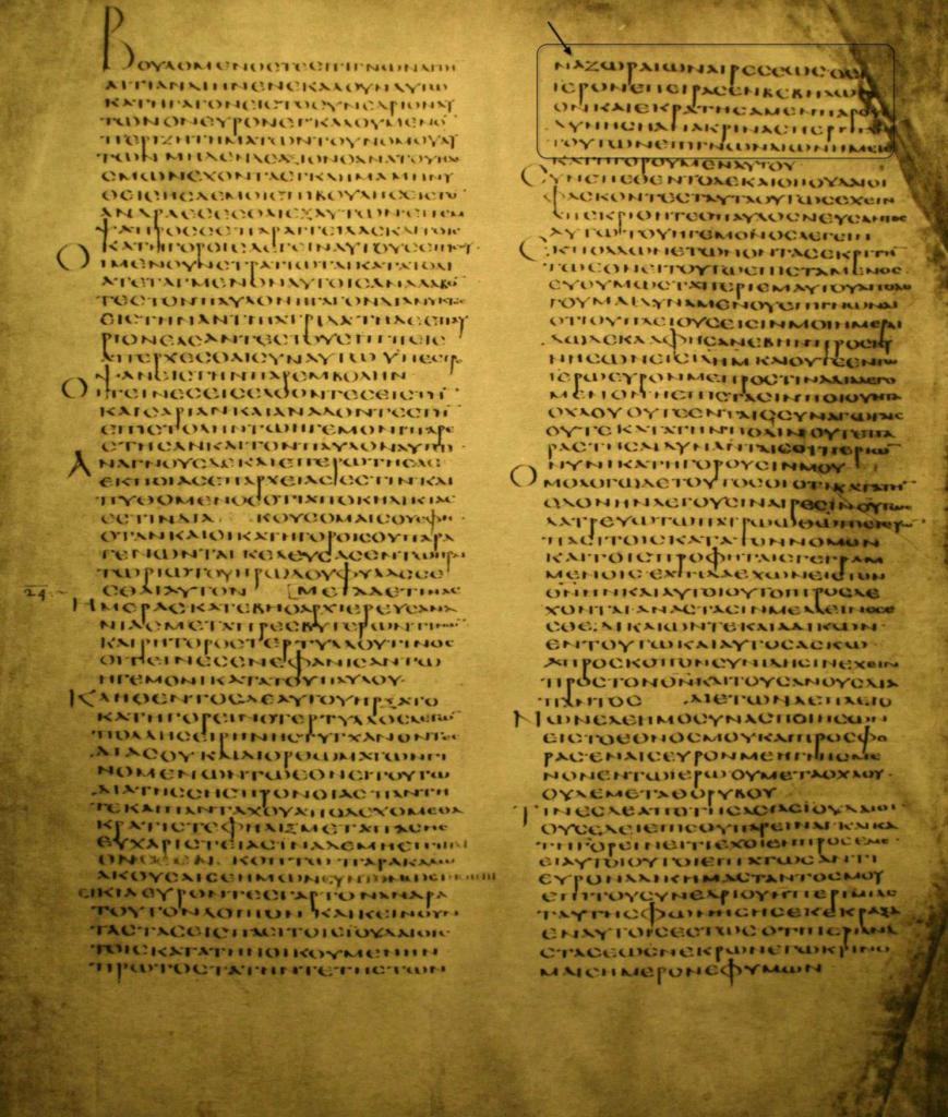 image 42
